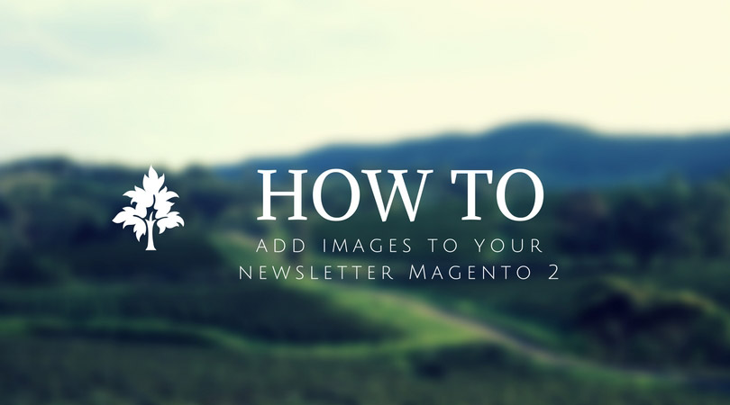 How to add images to your newsletter Magento 2