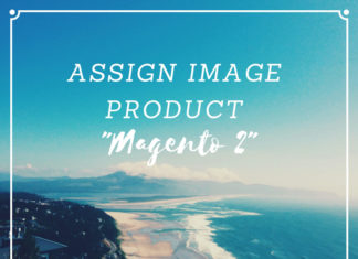 assign image product magento 2