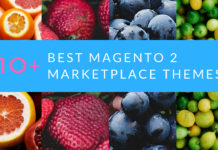 1O+best magento 2 marketplace themes