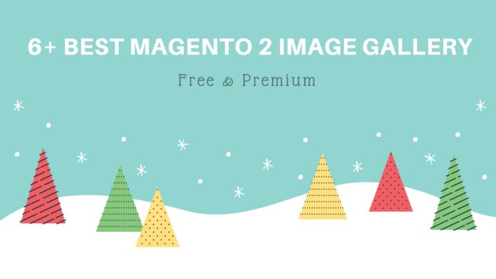 6+ Best Magento 2 Image Gallery