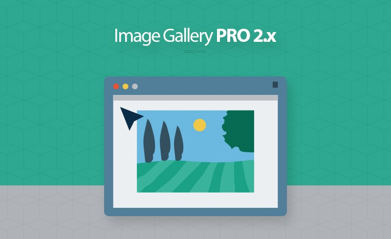 best magento 2 image gallery pro