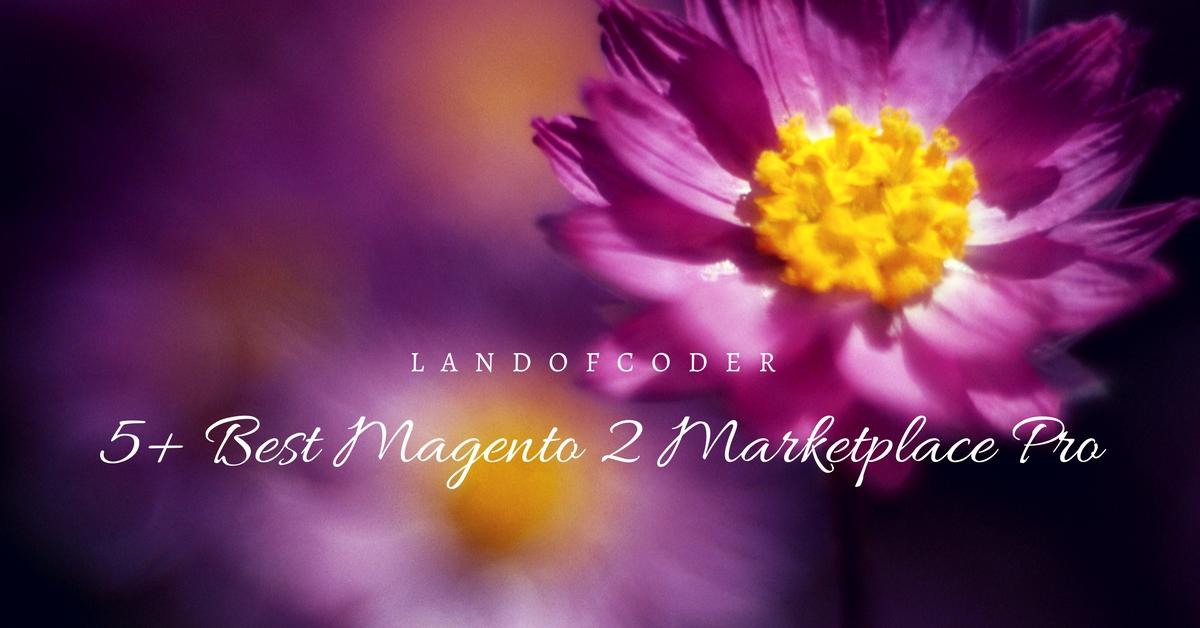 5+ BEST MAGENTO 2 MARKETPLACE PRO