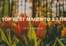 TOP 20+ BEST MAGENTO 2.3 THEMES
