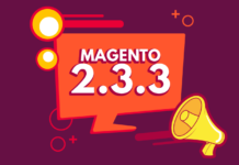 Magento released new edition 2.3.3